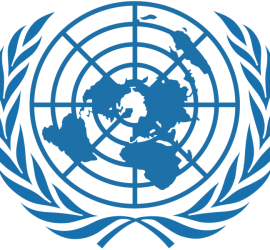 UN_logo BRISA